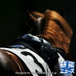 今野 光成 10月28日の推奨馬