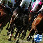 次走の狙い馬(3月24・25日 美浦組)