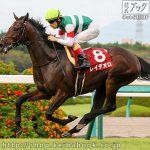 神戸新聞杯 レース回顧