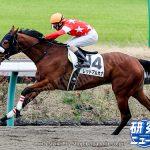 今野 光成 9月10日の推奨馬