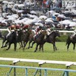 菊花賞 レース回顧