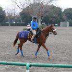 今野光成 3月4日の推奨馬