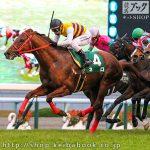 京阪杯 レース回顧