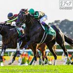 次走の狙い馬(9月15・16・17日 美浦組)
