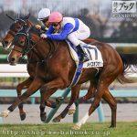 次走の狙い馬(12月16日 美浦組)