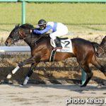 次走の狙い馬(1月6日 美浦組)