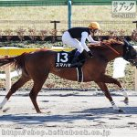 JAPAN ROAD TO THE KENTUCKY DERBY最終結果