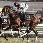 次走の狙い馬(3月18日 美浦組)