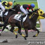 次走の狙い馬(4月21・22日 美浦組)