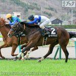 第66回 京都新聞杯の狙い馬