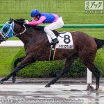 次走の狙い馬(5月12・13日 栗東組)