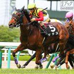次走の狙い馬(6月3日 栗東組)