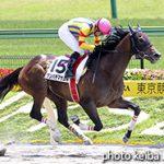 次走の狙い馬(6月30・7月1日 美浦組)