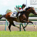 次走の狙い馬(7月8日 栗東組)