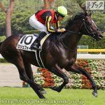 次走の狙い馬(8月4・5日 美浦組)