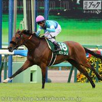 2016紫苑ステークス(ビッシュ)