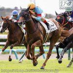 次走の狙い馬(9月23・24日 美浦組)