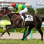 次走の狙い馬(9月29・10月2日 栗東組)