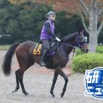 今野光成 11月24日の推奨馬