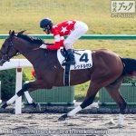 次走の狙い馬(11月17日 栗東組)