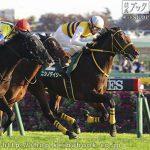 第23回 東京スポーツ杯2歳S 回顧
