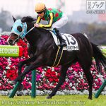 次走の狙い馬(12月22・23日 栗東組)