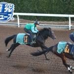 今野光成 12月15日の推奨馬