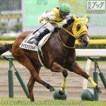 次走の狙い馬(1月13・14日 美浦組)
