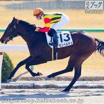 次走の狙い馬(1月12・13日 栗東組)