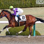 次走の狙い馬(2月23・24日 栗東組)