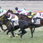 今野光成 3月23日の推奨馬