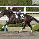 次走の狙い馬(3月16・17日 栗東組)
