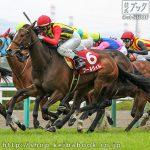 次走の狙い馬(10月5・6日 美浦組)