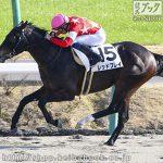 次走の狙い馬(3月9日 美浦組)