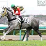 次走の狙い馬(3月30・31日 栗東組)