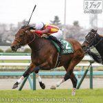 次走の狙い馬(6月20・21日 美浦組)