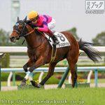 次走の狙い馬(5月18・19日 栗東組)
