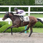 次走の狙い馬(6月8・9日 栗東組)