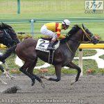 次走の狙い馬(6月8・9日 美浦組)