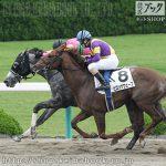 次走の狙い馬(6月1・2日 栗東組)