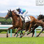 次走の狙い馬(6月15・16日 栗東組)