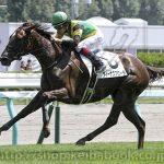 次走の狙い馬(6月22・23日 美浦組)