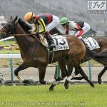 次走の狙い馬(7月6・7日 美浦組)