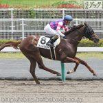 次走の狙い馬(6月29・30日 栗東組)