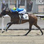 次走の狙い馬(8月10・11日 美浦組)