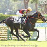次走の狙い馬(8月18日 美浦組)