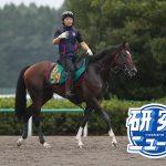 2019 有力新馬PICK UP!(ブレッシングレイン)