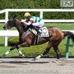 次走の狙い馬(9月14・15日 栗東組)