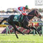第24回 東京スポーツ杯2歳S 回顧