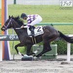 次走の狙い馬(11月2・3日 栗東組)